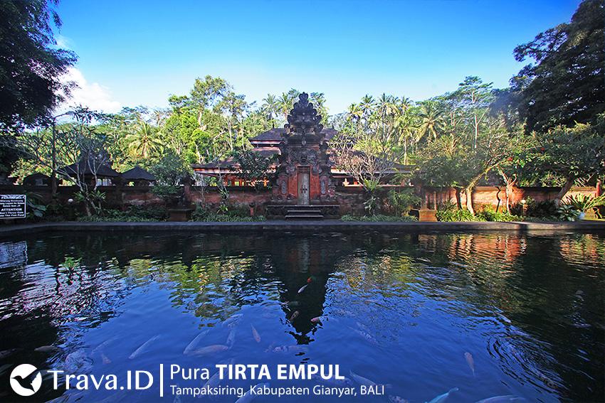 Kolam Luas yang Penuh Dengan Ikan Warna-Warni di Pura Tirta Empul Bali